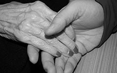 Elder Abuse & Nursing Home Lawyers